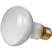 Zilla Day White Light Incandescent Spot Bulb, 75 Watts