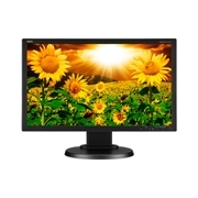 NEC E201W-BK 20 inch Eco-Friendly Widescreen Desktop Monitor
